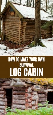 How To Build Your Own Survival Log Cabin In Five Steps